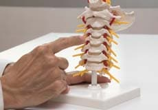 chiropractor NYC - better health chiropractic New York NY